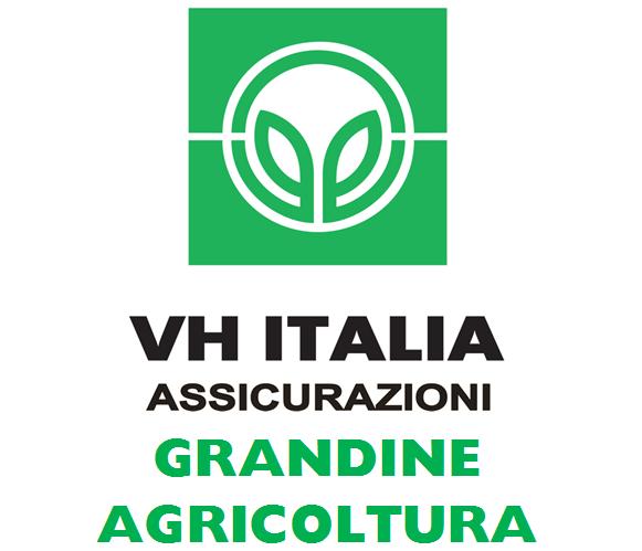 VH-Italia